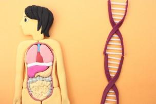 糖尿病遺伝