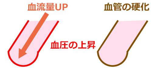 高血圧と血液・血管の関係