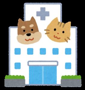 犬・猫の透析治療