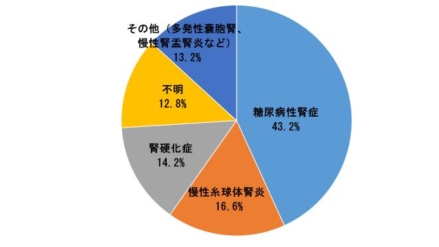 透析患者の原疾患における円グラフ